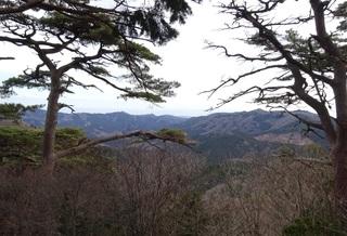 頂上からの眺め.JPG