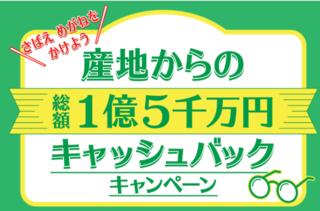 鯖江キャンペーン.png